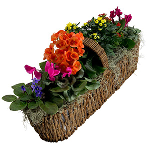 ALL BLOOMING CANOE BASKET